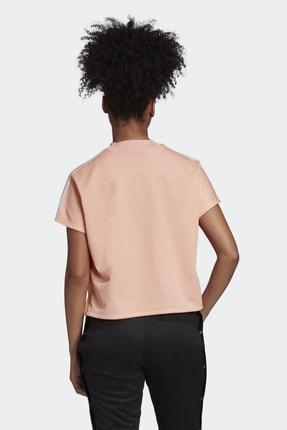 adidas AtTEETude Tee Kadın Tişört 4