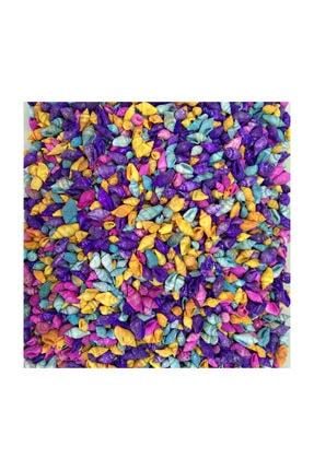 TURKUAZ 100 Adet Karışık Renkli Minik Deniz Kabukları Nassa Shell 0