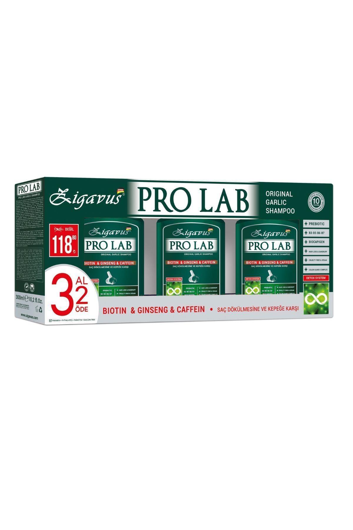 Pro Lab Şampuan 300 ml 3 Al 2 Öde - Sarımsak, Kafein, Biotin, Ginseng Özlü 8699349130770