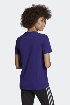 adidas Kadın Originals T-shirt - Trefoil Tee - ED7497 2