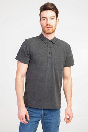Kiğılı Polo Yaka Regular Fit Tişört 0