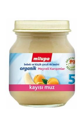 Aptamil Organik Kayısı Muz 125 gr 0