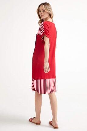 Sementa Marine Kısa Kol Kadın Elbise - Kırmızı 3