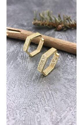 Joel Jewelry Zirkon Taşlı Altın Kaplamalı Altıgen Tasarım Gümüş Halka Küpe 0